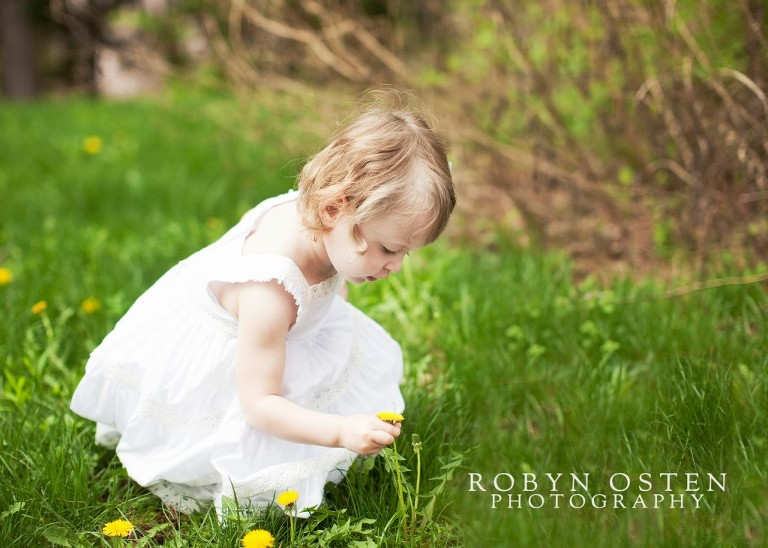 child picking flowers in field outdoor spring portraits baltimore